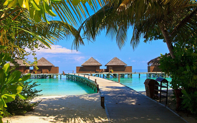 ile maldives